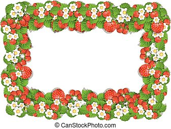 Frame of Strawberry