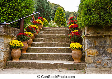 Home garden with decorated stairs - Potted flowers on a...