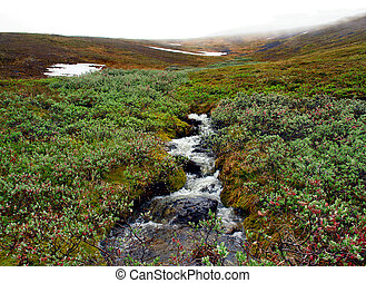 Creek meltwater - Spring in the Chukchi tundra Creek...