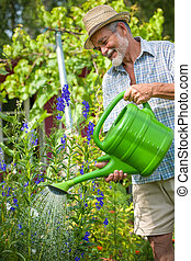 Senior man with a watering can - Senior man watering the...