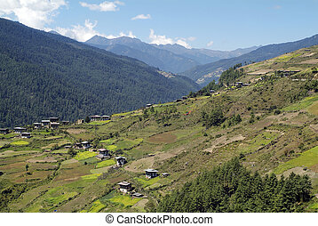 Bhutan, Haa - Bhutan, rural area in Haa valley