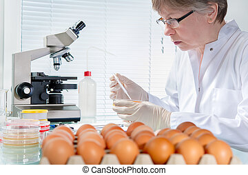 Food safety concept - Quality control expert inspecting at...