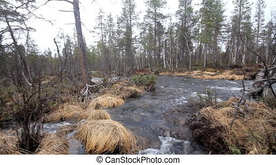 Typical taiga river - View of a mountain river, which...