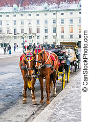 Two horses harnessed to the carriage at winter in Vienna,...
