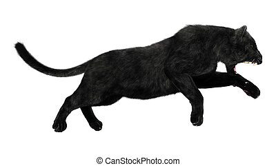 Black Panther - 3D digital render of a hunting black panther...