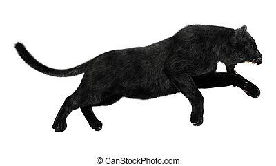 Black Panther - 3D digital render of a hunting black panther...