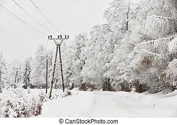 Wintry landscape - Snow covered electricity pylons in wintry...