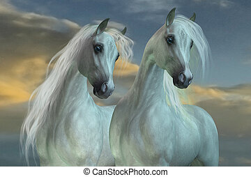 Arabian Brothers - The Arabian horse breed was developed in...