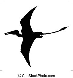 pterodactyl - black silhouette of pterodactyl