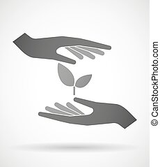Hands protecting or giving a plant - Two hands protecting or...