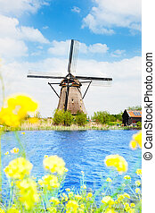 Old windmill in Kinderdijk at spring - View of old windmill...