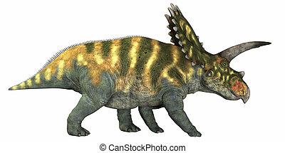 Coahuilaceratops on White