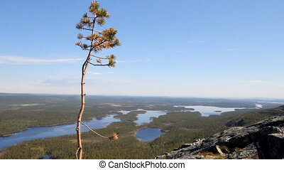 Spectacular views of valley taiga river - From top of...