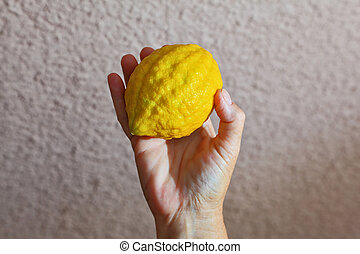 Autumn Jewish holiday - Sukkot. Ritual yellow citrus - etrog...