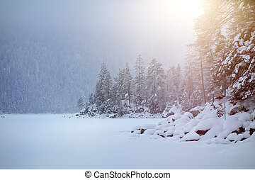 Eibsee winter - An image of the Eibsee at winter