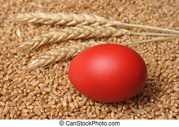 Easter  - Red easter egg on wheat  in close up