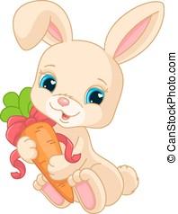 Rabbit holds carrot - Small lovely rabbit holds orange...
