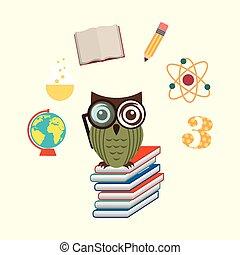 owls school