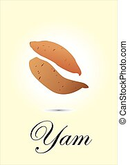 Yam chart vector illustration
