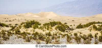 Sand Dunes of Mesquite Flats desert, Death Valley,...