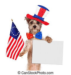 Fourth of July Dog With Sign - Dog wearing Independence Day...