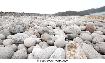 boulders beach on shore of Barents sea - huge boulders on...