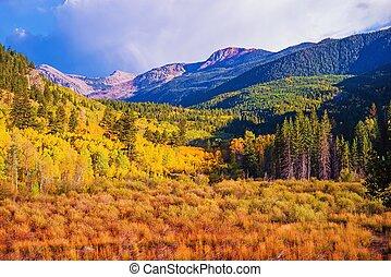 Scenic Aspen Lanscape. Colorado Rocky Mountains. Aspen,...