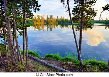 Reflection of trees in the lake at Ice Lake Campground in...