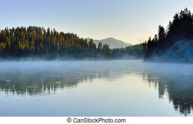 fog over the river in Hayden Valley of Yellowstone National Park in summer