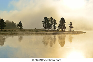 fog over the river in Hayden Valley of Yellowstone National...