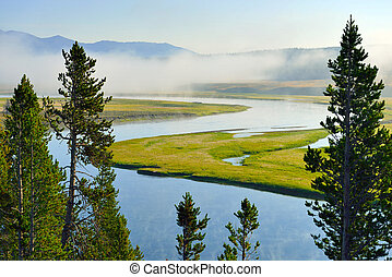 fog over the snake river in Hayden Valley of Yellowstone National Park in summer