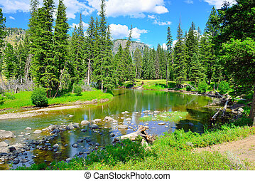 Slough Creek campground in Yellowstone National Park,...