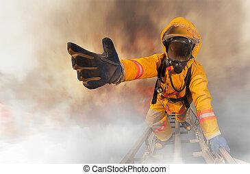 bomberos, rescatado, el, sobrevivientes,