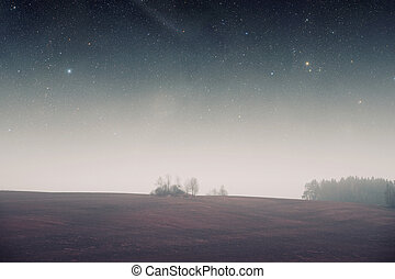 night field forest Elements of this image furnished by NASA...