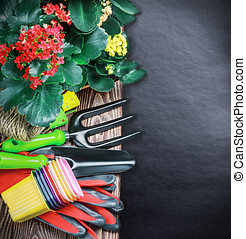 Gardening tools on a black background - Gardening tools on a...