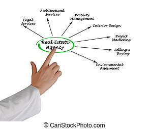 Real estate agency