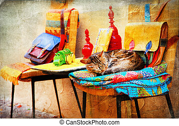 charming streets pictures - cat with old toys