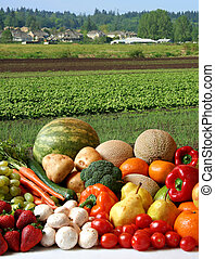 Farmer's crop - Large variety of fresh fruit and vegetables,...