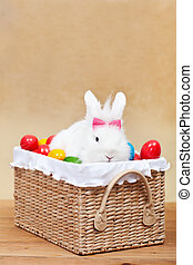 Cute easter bunny with colorful eggs sitting in a basket