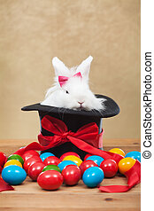 Cute but grumpy easter bunny with colorful dyed eggs - Cute...