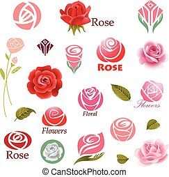 Roses design elements  - Set of rose flower design elements