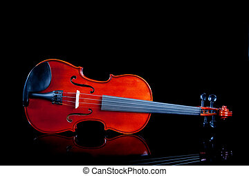 Violin on a black background - A violin on a black...