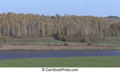 Autumn view from the birch. Lake.