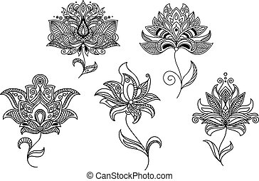 Persian and indian paisley flowers and decorative elements...