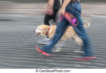 Man and woman walking with a dog. Intentional motion blur