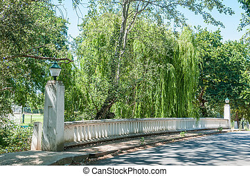 Historical bridge in Stellenbosch in the Western Cape...