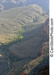 Grand Canyon River Etched With Lush Foliage - Looking down...