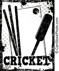 Cricket dirty poster