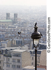 four doves at a lantern and the rooftops of paris - four...