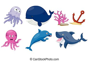 Illustrator of sea animals